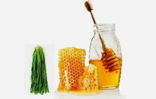 Chữa ho cho trẻ bằng mật ong và lá hẹ