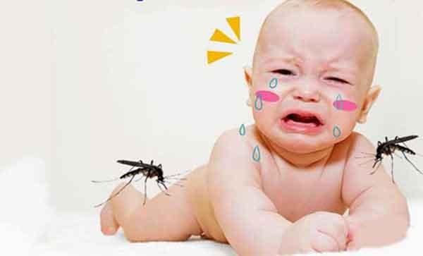 Tại sao trẻ em dễ bị mắc sốt xuất huyết?