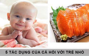 5 tác dụng của cá hồi đối với trẻ nhỏ 4
