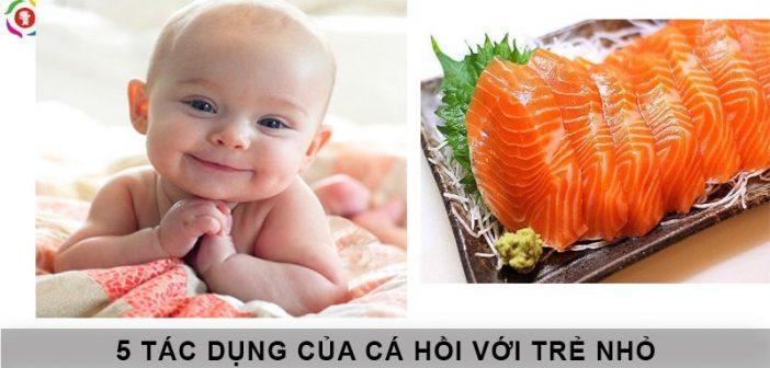 5 tác dụng của cá hồi đối với trẻ nhỏ 1