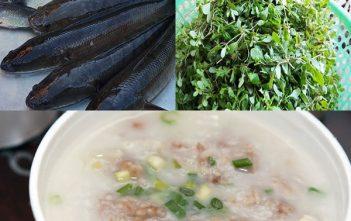 cách nấu cháo cá lóc rau đắng đất