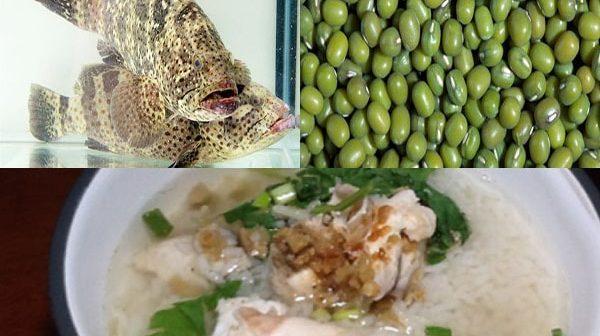 cách nấu cháo cá mú đậu xanh