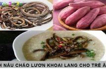 Cách nấu cháo lươn khoai lang cho trẻ ăn dặm không bị tanh 4