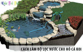 Hướng dẫn cách làm bộ lọc nước cho hồ cá Koi