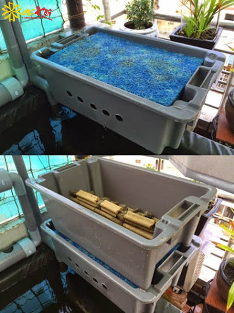 Setup tầng 2 của lọc nước hồ cá koi